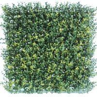 Siepe Squaregreen Bosso Green