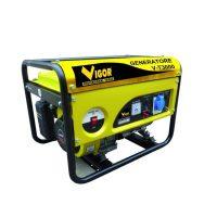 Generatore Vigor 5309220