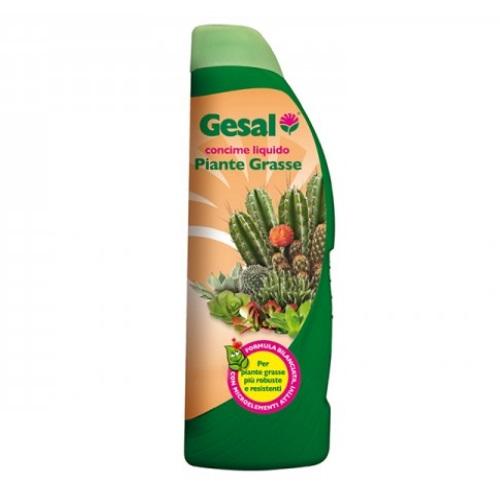 Concime liquido per piante grasse 1 lt. by Gesal