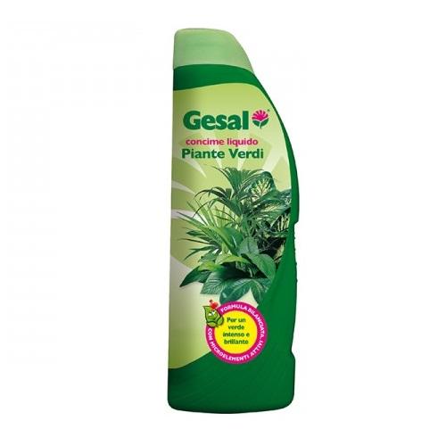 Concime liquido per piante verdi 1 Lt. by Geal