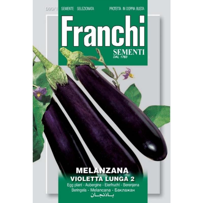 Melanzana violetta lunga fronte