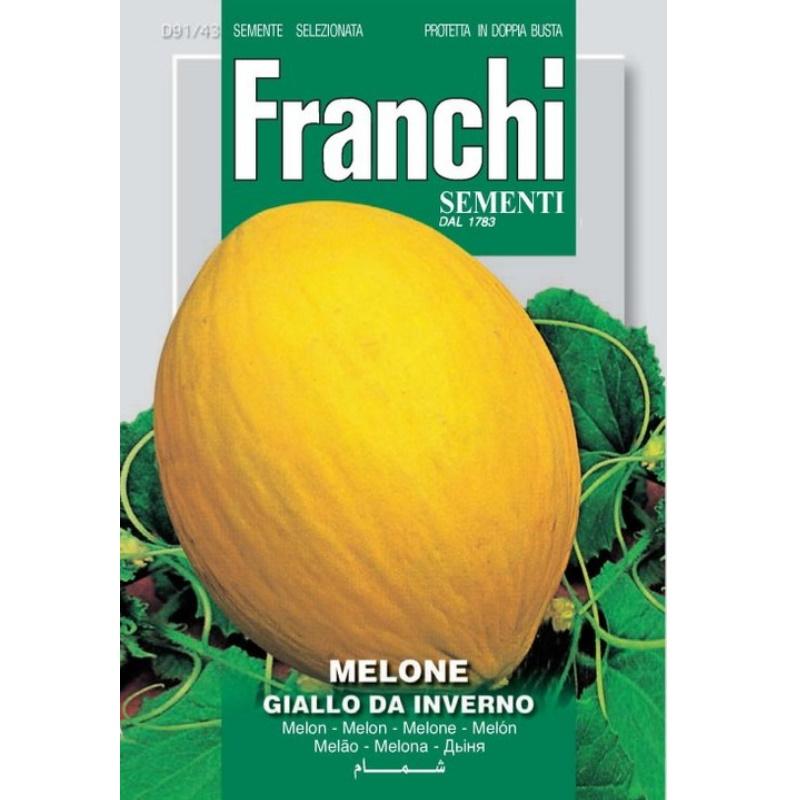 Melone giallo da inverno fronte